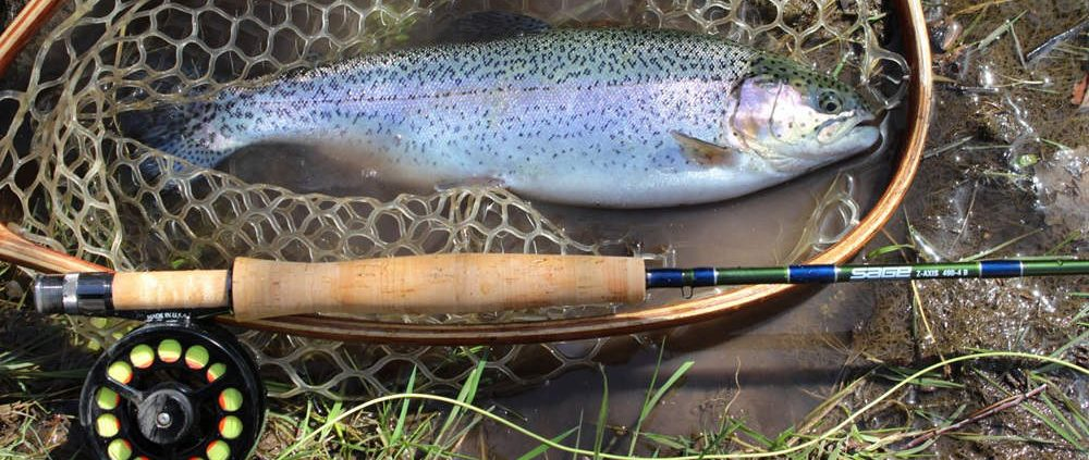 Reasons To Build & Fish With A Custom Rod